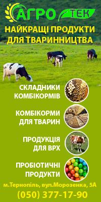 Купити кормові концентрати для свиней, купити премікс для свиней, корми для тварин, корми для птиці, корми для риб, комбікорм для тварин, корми для КРОЛІВ