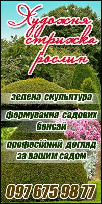 Художня стрижка рослин. Професійний догляд за вашим садом.